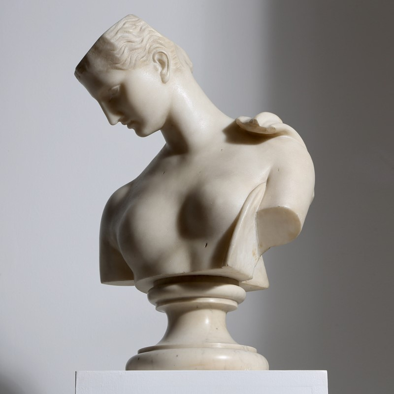 Marble Bust of Psyche-vagabond-psyche-6-main-637361906170184418.jpg