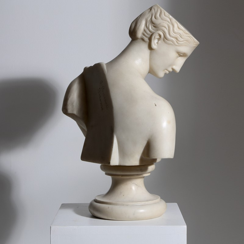 Marble Bust of Psyche-vagabond-psyche-main-637361905535040882.jpg