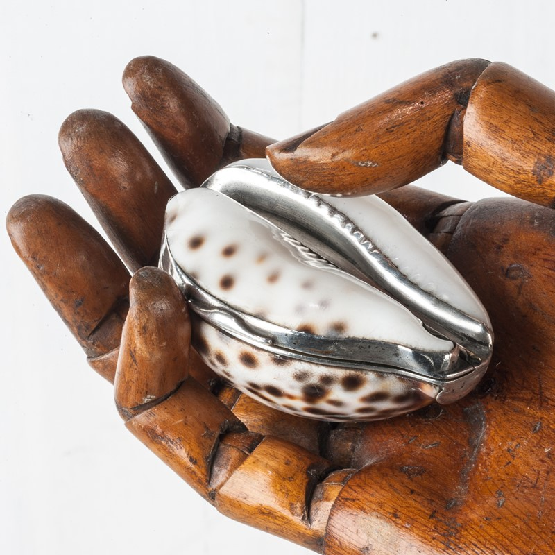 George IV silver mounted Cowrie Shell Snuff Box-walpoles-3886g-main-637176624877274546.jpg