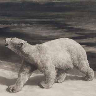 A Polar Night by Herbert Dicksee