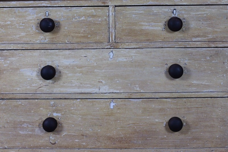 Pine Chest Of Drawers Dry Scarped Orignal Paint-wolfe-antiques-ltd-s-l1600-2-main-636738355317750496.jpg
